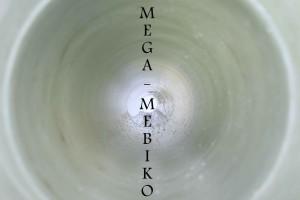 IMG_0494 (2)
